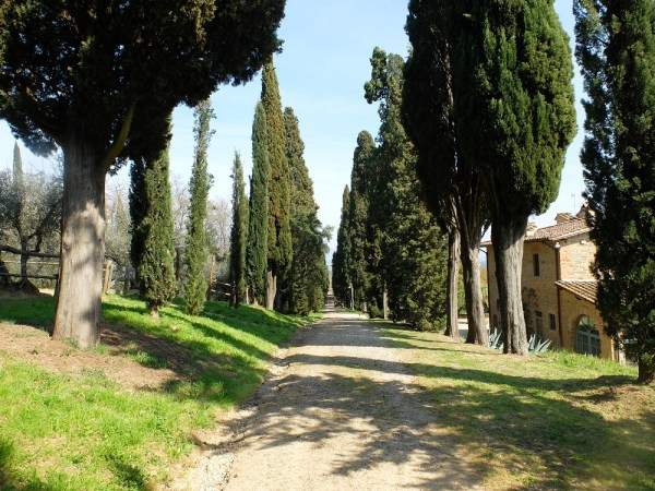7 Areas of Tuscany That Deserve a Closer Look Girl in