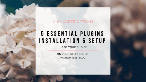 Wordpress Plugin Setup