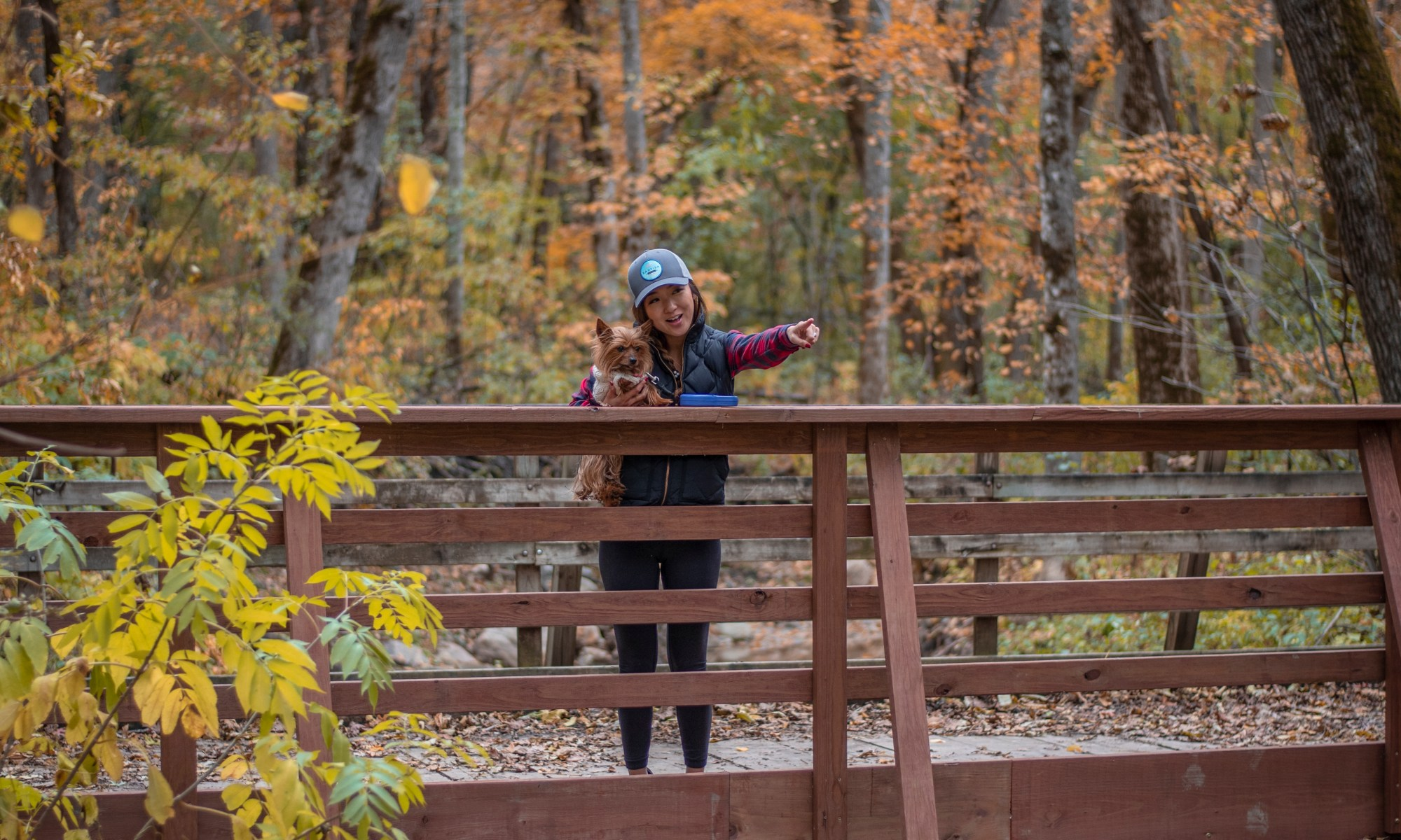 Fall colors at Kaplan's Woods Parkway