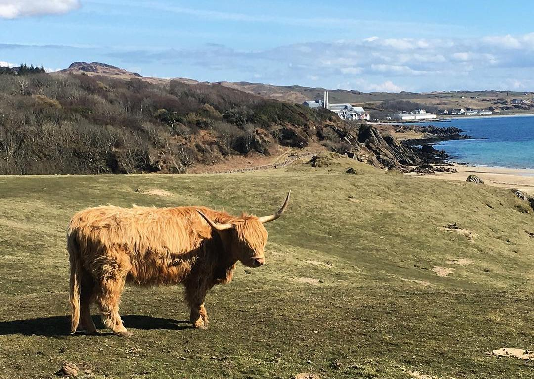 A Long Weekend on Islay, Scotland | A Girl of Many Passports