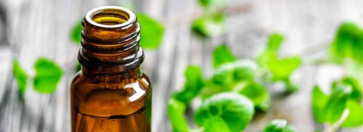 Keep-your-scalp-clean-and-free-from-oil