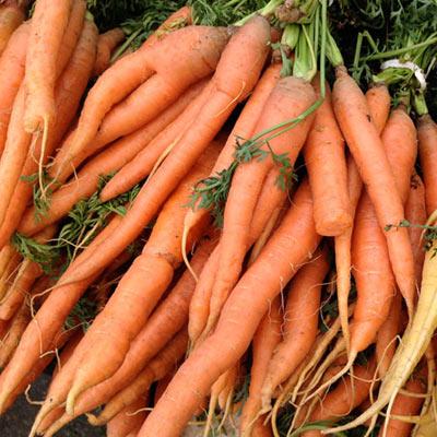 Best Food for Healthy Skin