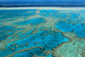 ©Flickr.com: The Great Barrier Reef