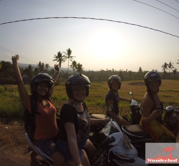 Scooterfriends.jpg