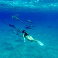 Top 3 Things To Do on Lana'i Island, Hawaii