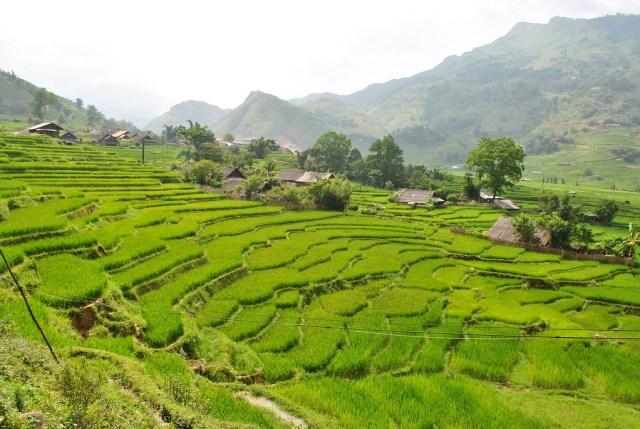 The Best Sapa Trekking Tours, Vietnam.jpg