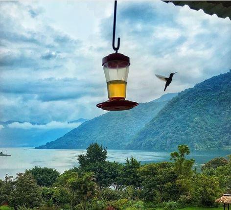 Photo @travelmaddad Hotel Tolimán The perfect place to unwind at lake Atitlán by @girlswanderlust #girlswanderlust #hoteltoliman #sanlucas #sanlucastoliman #guatemala #lagoatitlan #atitlan #panajachel #travel #traveling #wanderlust.JPG