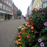 One day trip to Roskilde - 10 city highlights