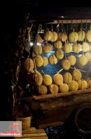 Durian 2. City guide Palembang, Sumatra, Indonesia – activities and food