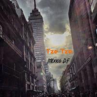 'Música Para Sanar El Alma': TZE-TZE- Electronic Vibes from Mexico