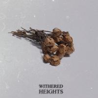 Lawan Vanida 'Withered Heights'