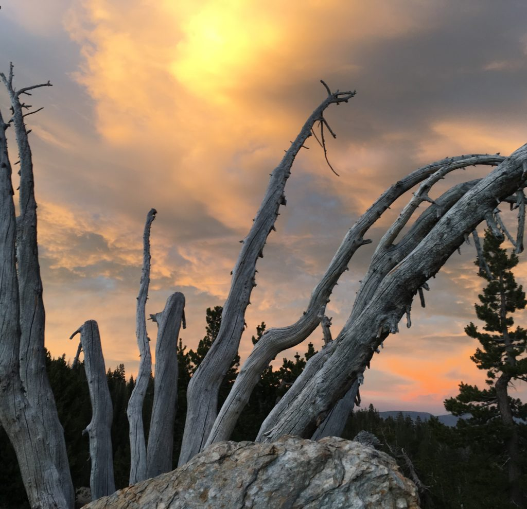 19 Reasons to See the Sunset in Mammoth, Girl Who Travels the World, Minaret Vista, Mammoth Lakes, California