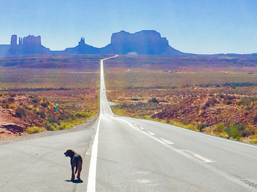 10 Photos to Inspire Your Monument Valley Road Trip, Girl Who Travels the World