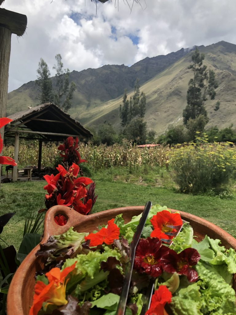 El Albergue Hotel in Ollantaytambo, Girl WHo Travels the World