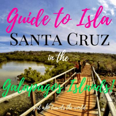 Guide to Santa Cruz Island in the Galapagos!