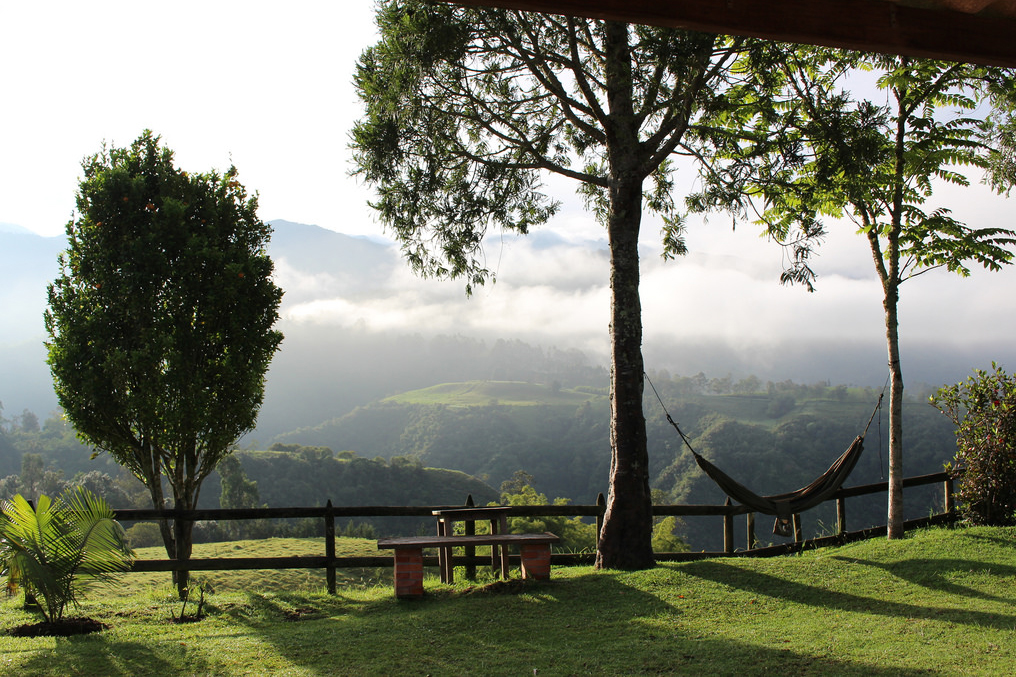 Hiking in Colombia's Cocora Valley, Girl Who Travels the World