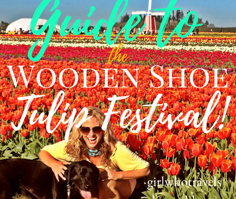 Guide to the Wooden Shoe Tulip Festival in Oregon, Girl Who Travels the World