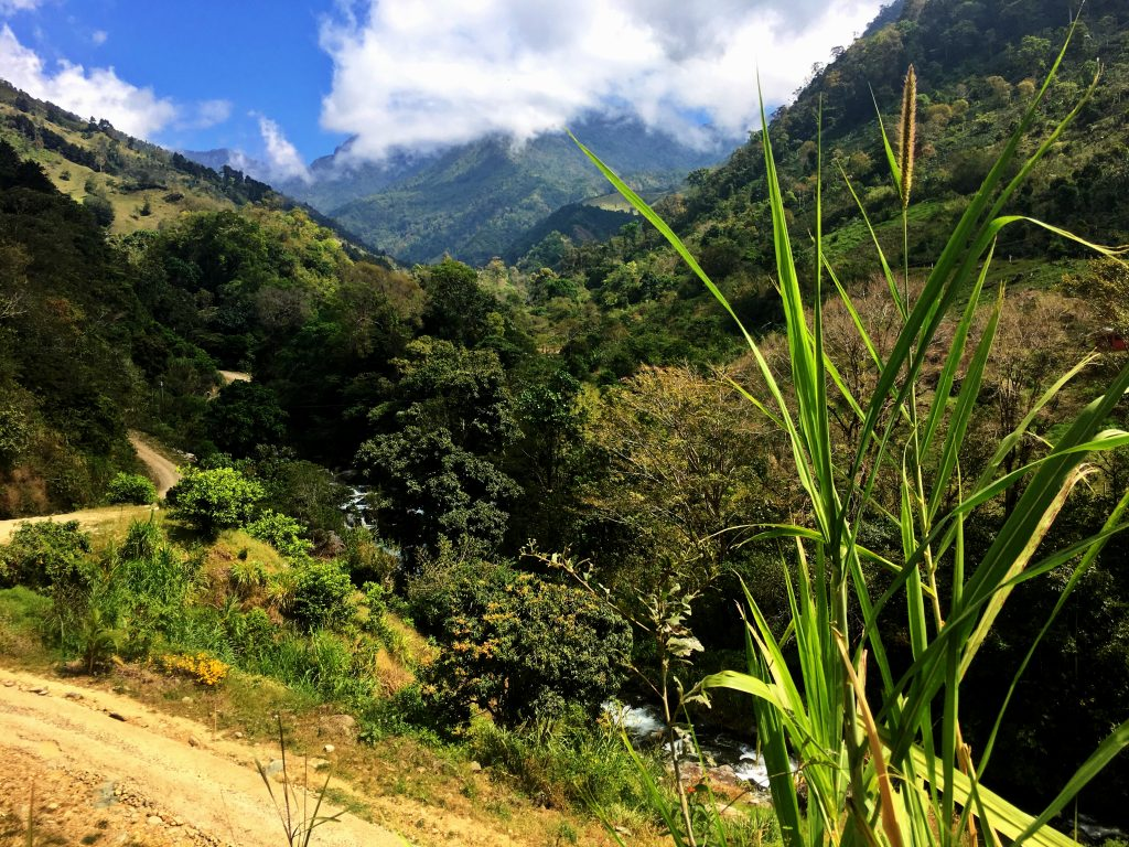 Ultimate Guide to Costa RIca Travel, Girl Who Travels the World