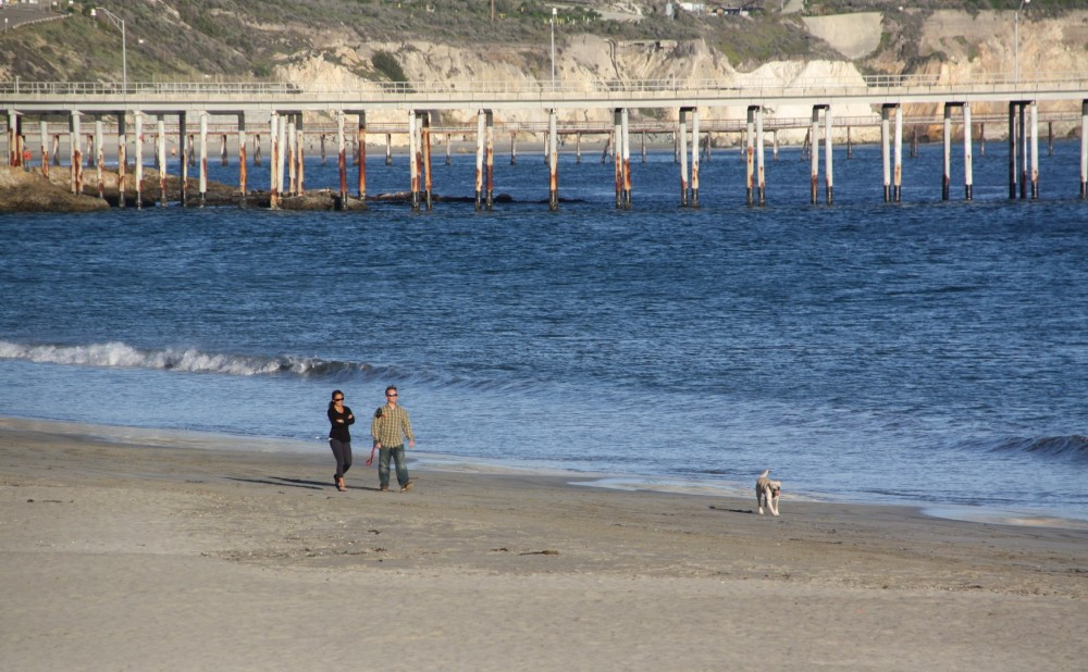 Best Off-Leash Dog Beaches in Central California, Girl Who Travels the World