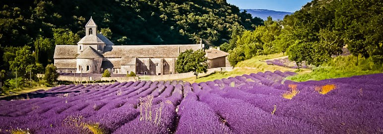 When to See the Lavender Fields in Provence, Girl Who Travels the World