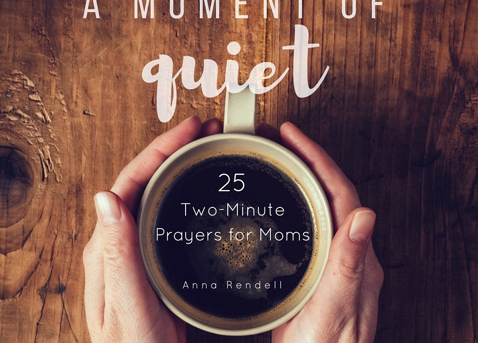 A Moment of Quiet: Introducing My New Book!