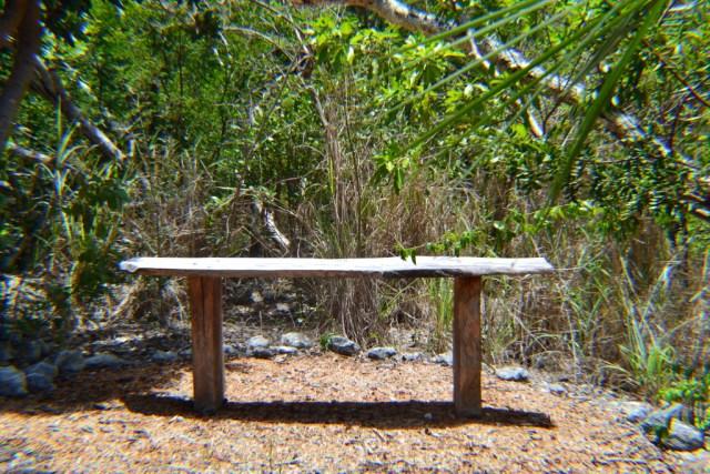 Leon Levy Native Plant Preserve - Sitting Area