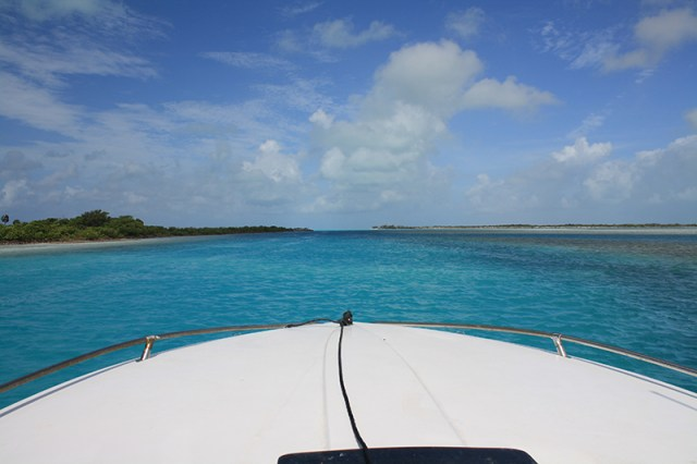 Bahamas Discovery Quest - Boat