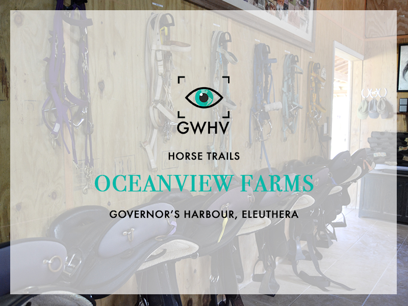 OceanviewFarms-Feature
