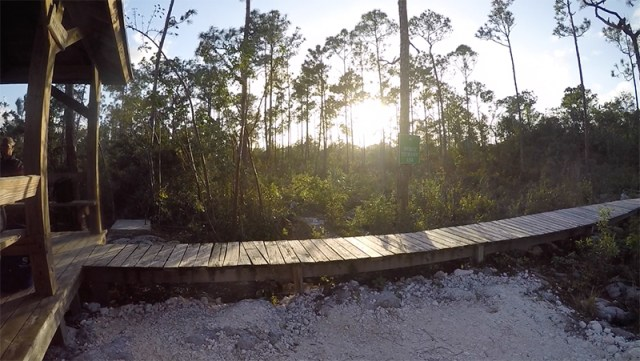 CaptianBill'sBlueHole-Boardwalk