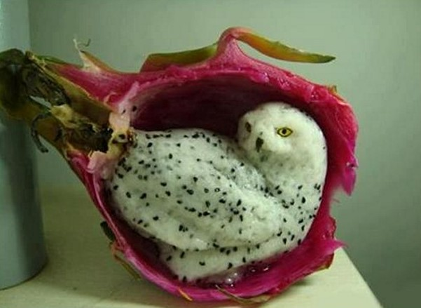cute-art-made-from-fruit (38)