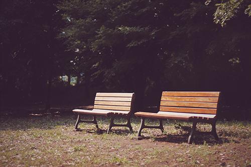「ベンチ」「公園」などがテーマのフリー写真画像