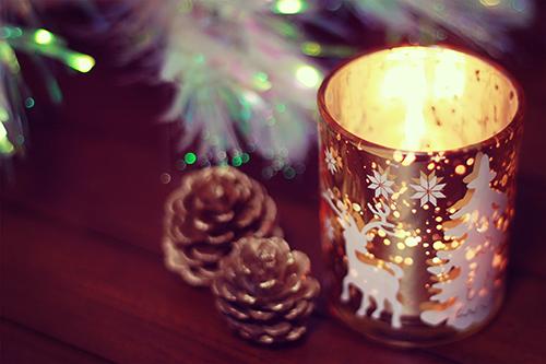 「キャンドル」「クリスマスツリー」「植物」などがテーマのフリー写真画像
