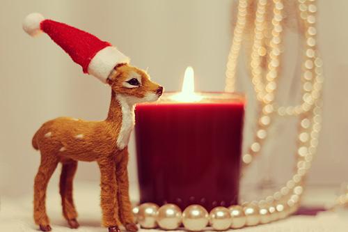 「キャンドル」「サンタ」「サンタ帽」「トナカイ」などがテーマのフリー写真画像