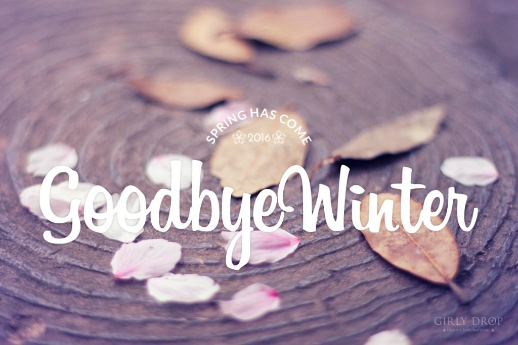 春がくるよ!冬にさよなら!!おしゃれな桜と梅のフリー写真画像をたくさんアップしました♡
