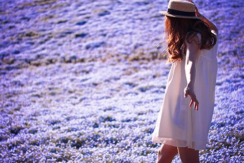 「ネモフィラ」「公園」「帽子」「春」「花」「花畑」などがテーマのフリー写真画像