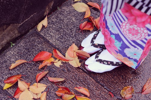 金沢の落ち葉を踏みしめる着物ガール、冬の足元