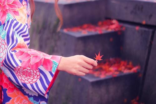 「冬」「和」「女性・女の子」「着物」「紅葉」「落ち葉」「金沢」などがテーマのフリー写真画像