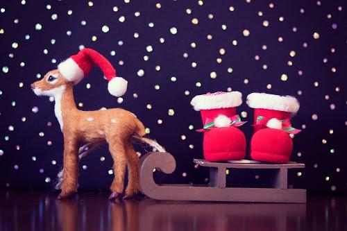 「トナカイ」「プレゼント」「夜」などがテーマのフリー写真画像