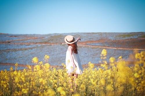 「ネモフィラ」「女性・女の子」「指差し」「春」「植物」「空」「花」「花畑」「菜の花」などがテーマのフリー写真画像