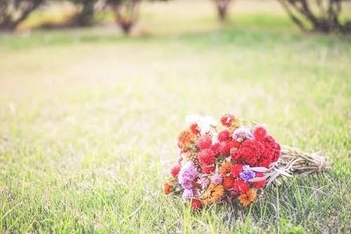 「ドライフラワー」「母の日」「花」「花束」「草原」などがテーマのフリー写真画像