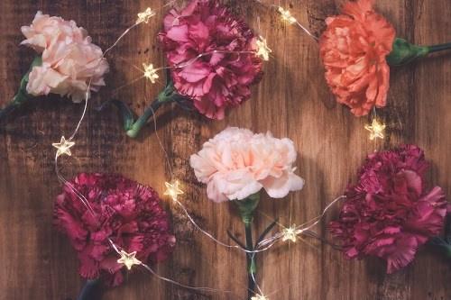 「カーネーション」「俯瞰撮り」「植物」「母の日」「真上から」「花」「電飾」などがテーマのフリー写真画像