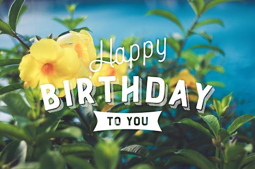 「HAPPY BIRTHDAY」「おめでとう」「お祝い」「お誕生日おめでとう」「南国」「夏」「夏の誕生日」などがテーマのフリー写真画像