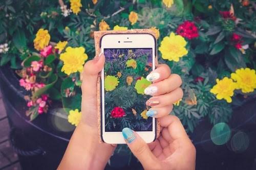 可愛いカラフルなお花をスマホで撮っている様子