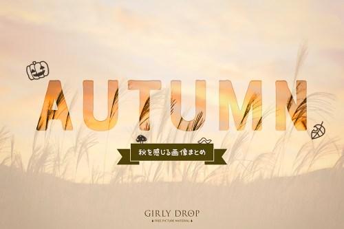 秋を感じるデザインがいっぱい♡おしゃれで可愛い秋の画像まとめ[無料]