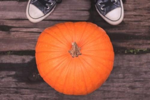 「カボチャ」「スニーカー」「俯瞰撮り」「真上から」「秋」などがテーマのフリー写真画像