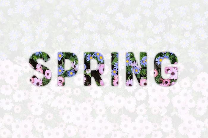 「公園」「花」「藤」「藤棚」などがテーマのフリー写真画像