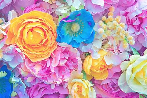 フリー写真素材:彩度高めのカラフルなお花のテクスチャ