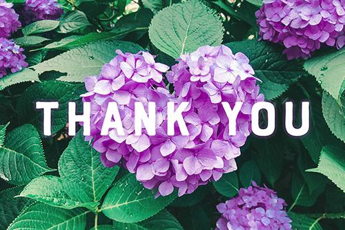 フリー写真素材:写真スタンプ:『Thank You』その14