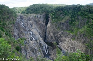 Cairns (21)-barron-falls