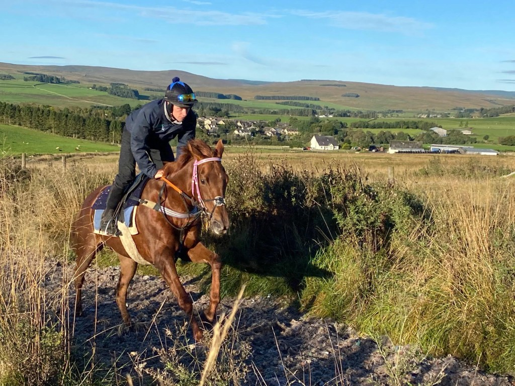 Redesdale Angel 4